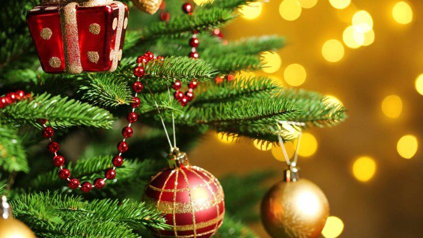 Sapin de Noël ou autres produits de Noël